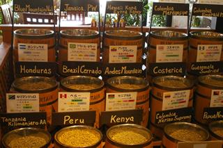 世界のコーヒー豆